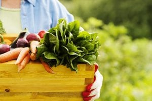 7 Most Nutrient-Dense Foods to Supercharge Your Body