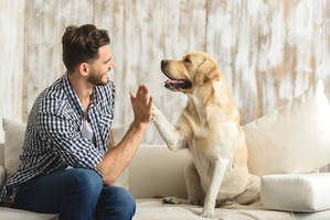 8 Most Common Diseases You Can Get from Your Pet